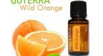 Divoký pomaranč - Wild Orange